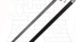 Espada Rapiera de hoja ancha 250x141 - Espada Rapiera Marauder