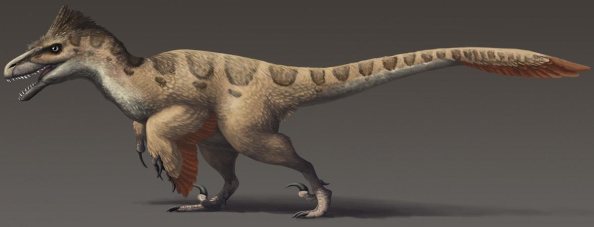 Utahraptor 1200x568 - Utahraptor